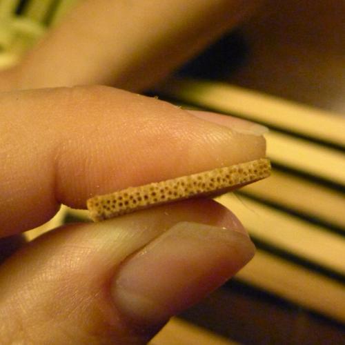 Reed fibers
