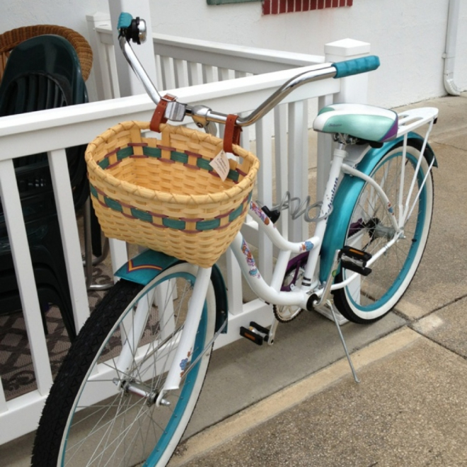 Bicycle Basket - Custom Colors